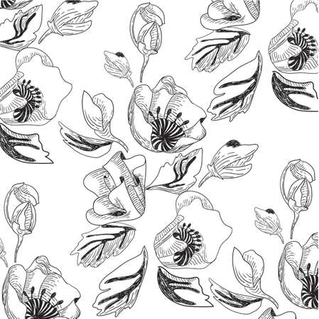 Vector black and white pattern with poppy flowers