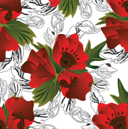 Vector color black and white pattern with poppy flowers
