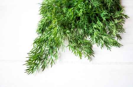 finocchio: Dill and fennel on a white background