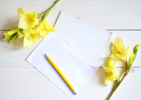 Yellow gladiolus and card with pencil on withe background