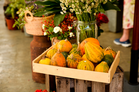 Different exotic fruits at fairy at Ibiza. Stock Photo
