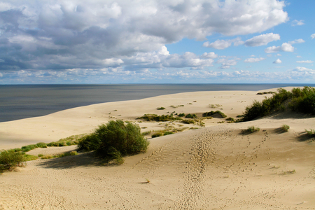 to spit: Dunes of the Curonian Spit Stock Photo