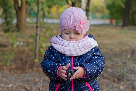A little girl holds a fir cone in the autumn park