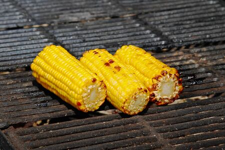 Delicious golden grilled corns on the grille