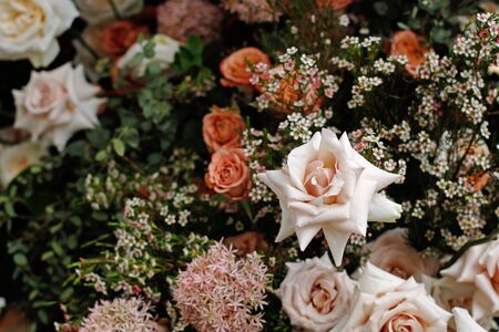 A bouquet of beautiful roses, allium and gypsophilas at the spring festival Stock Photo