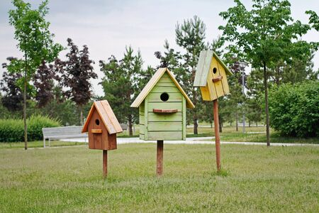 Brown, green and yellow birdhouses standing on green grass in park