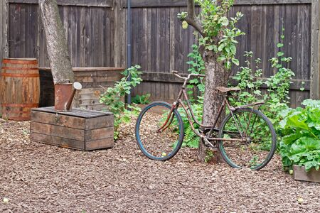 Old bicycle, rusty watering can on wooden box and barrel in garden