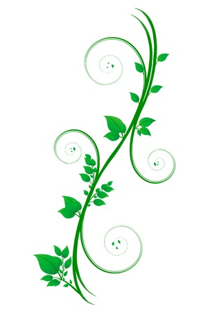 Floral scroll with leaves
