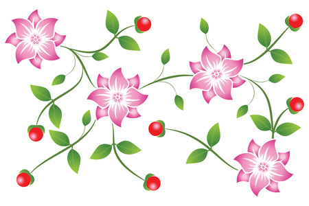 Scroll flowers  with berry and leaves isolated on white