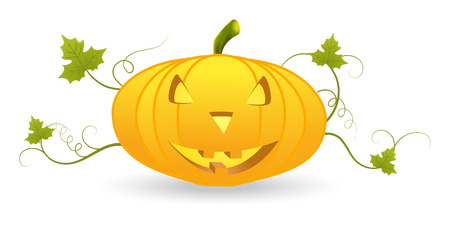 Halloween pumpkin lantern with leaf and scroll isolated on white Illustration