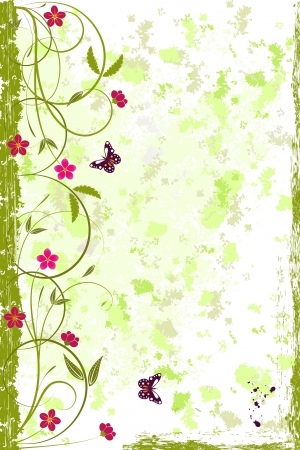 Grunge  background with scroll, flowers and butterfly, Vector