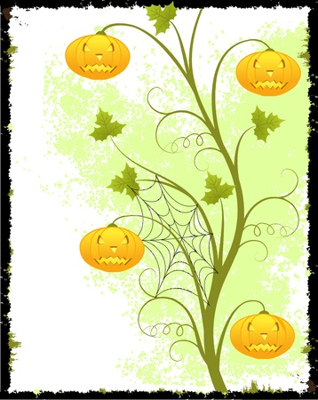 Grunge  background with scroll, pumkins, leaf and spiders web, isolated on white,  illustration