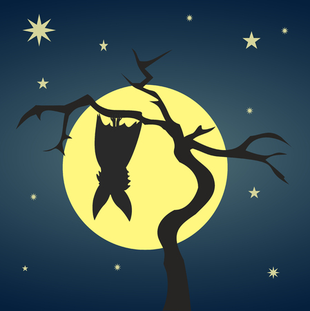 nights: Silhouette bat hanging on a dry tree on background of full moon and starry nights. Stylish colorful illustration of happy Halloween. Illustration