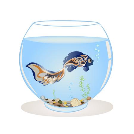 Blue fish swims in the aquarium.