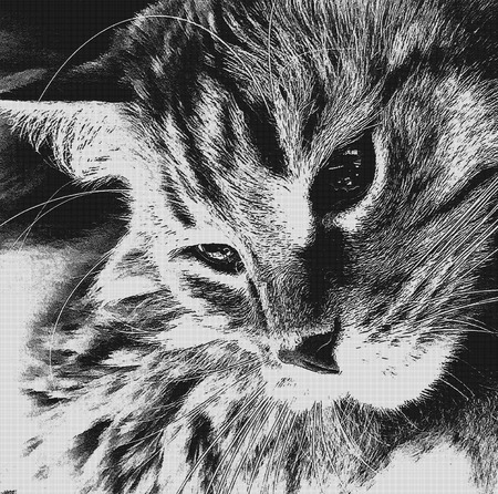 The cat looks away. Cute cat relaxed looking to the side. Portrait of a cats face in profile. Illustration in black and white colors. Halftone pattern, art poster, wallpaper for your design.