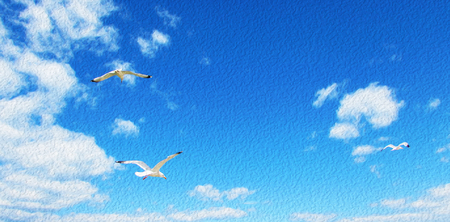 Seagulls hovering in the blue sky with clouds. Gulls flying in heaven.