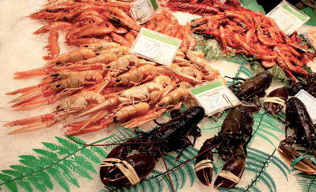 A tray of sea food at a local street market, Spain. Close-up of prawns, shrimps, lobsters and other sea food lying on a ice.