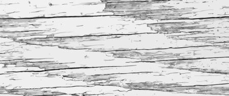 Light vintage backdrop. Grunge texture of cracked wood plank