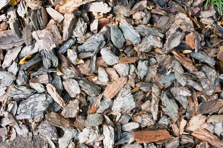 Natural brown backdrop of shredded pieces of tree bark.