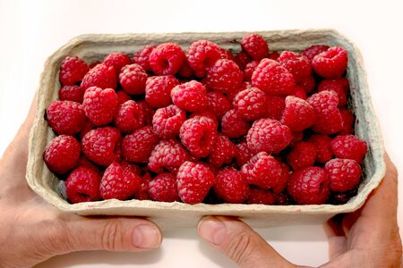 Photo of sweet raspberry in packaging. Womans hand holding box with berries. Fresh and ripe red fruit in pack, closeup. Healthy, delicious dessert. Isolated on white. 免版税图像 - 138042505