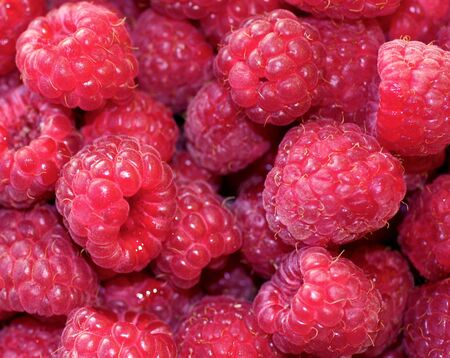 Natural background of sweet raspberry. Fresh and ripe red berries, closeup photo. Healthy, delicious dessert. 免版税图像
