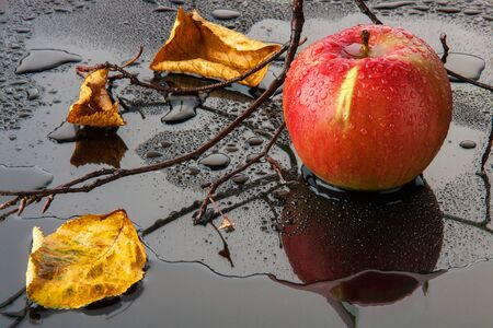 red striped Apple with yellow autumn leaves and a branch in the water on a black glass