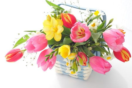 march: Spring flowers in basket isolated on white Stock Photo