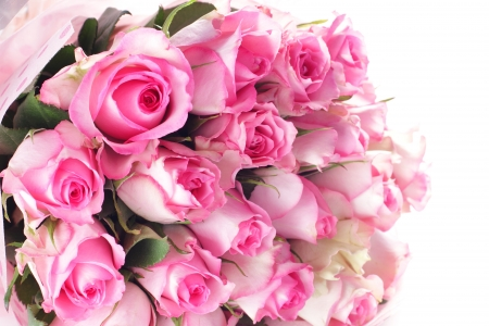 pink roses: Pink Roses Bouquet
