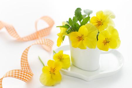 yellow pnasy and ribbon photo