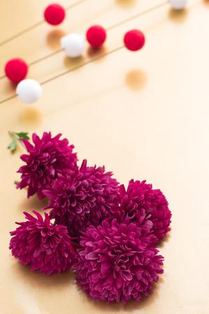 japanese chrysanthemum: Beautiful red Chrysanthemum flowers for Japanese New Year background image