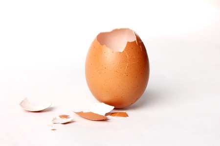 egg shell opening  It uncooked splinter