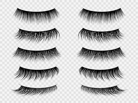 False lashes. Realistic eyelashes, fake thick lash on closed eye. Trendy women beauty salon makeup, isolated set