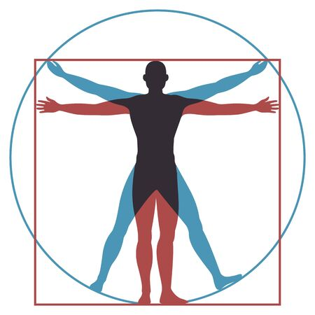 Vitruvian man. Leonardo da vinci human body perfect anatomy proportions in circle and square. Vector renaissance health men silhouette Vettoriali