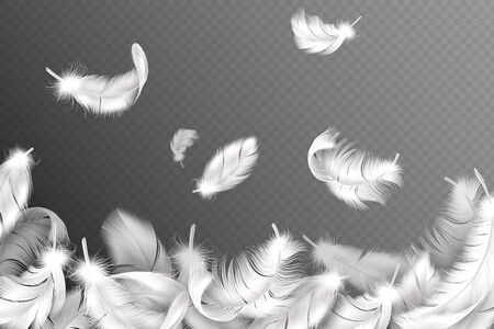 White feathers background. Falling flying fluffy swan, dove or angel wings feather, soft bird plumage. Style flyer with down object silhouette vector concept Иллюстрация