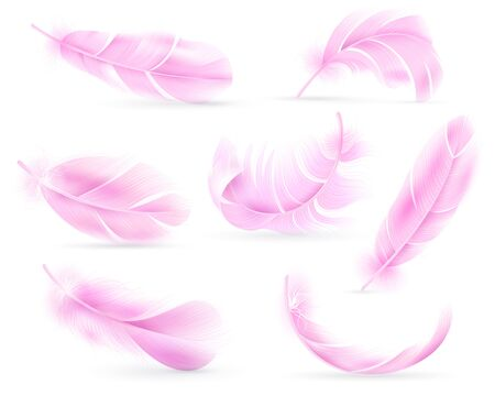 Pink feathers. Bird or angel feather, birds plumage. Flying fluff, falling fluffy twirled flamingo feathers. Realistic 3d vector isolated white shadow object set Иллюстрация