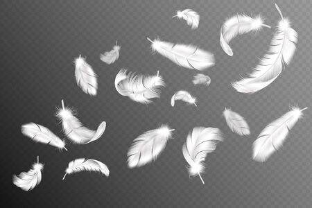 Flying feathers. Falling twirled fluffy realistic white swan, dove or angel wings feather flow, soft birds plumage vector silhouette drawing isolated object collection
