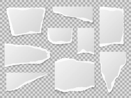 Torn paper. Different shapes of papers scraps, textured memo sheets. Grainy crumpled ripped edge strips, blank page. Vector pieces squares collection template Stok Fotoğraf - 129993145
