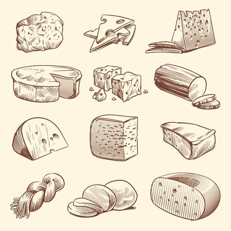 Hand drawn cheese. Various types of cheeses. Tasty brie, mozzarella and parmesan appetizer foods. Doodle sketch vintage vector meal slices organic group dairy set Stock Illustratie