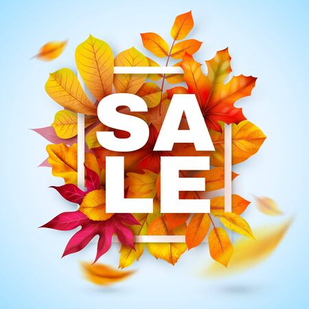 Autumn sale. Seasonal fall promotion design with red and yellow realistic leaves. Thanksgiving october discount offer. Vector autumnal season banner for special marketing retail