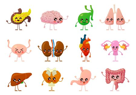 Internal organs. Human smiling brain, bladder and stomach, kidneys and intestines, liver and lungs, heart and pancreas cartoon vector body objects set