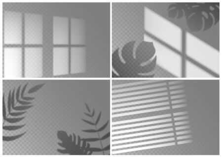 Realistic shadow overlay. Window light with shadow texture of tropical plant leaves on isolated background. Vector shade overlay abstract indoor lighting mockups