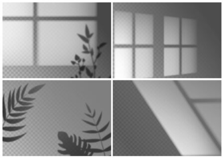 Realistic window shadow. Monstera leaves, palm branches and window frames overlay natural light effects. Vector transparent shadows lighting nature indoor mockup