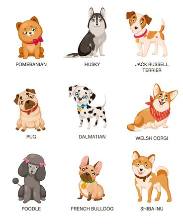 Cute puppies. Funny dogs of different breeds. Cartoon pomeranian, husky and terrier, pug and poodle, bulldog and dalmatian vector puppy home character Фото со стока - 133739324