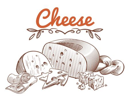 Swiss cheese sketch. Drawing vintage art ingredients for recipe with sliced cheddar and dairy gouda vector isolated engraved food image Иллюстрация