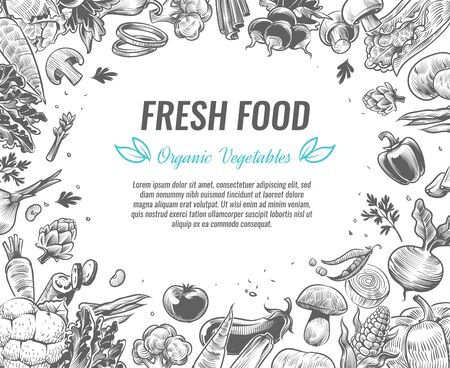 Croquis de légumes. Affiche d'aliments végétaux biologiques, brochures de produits végétaliens vintage dessinés à la main, brocoli biologique, tomate et pomme de terre, chou et carotte, ensemble de vecteurs isolés de croquis vintage Vecteurs