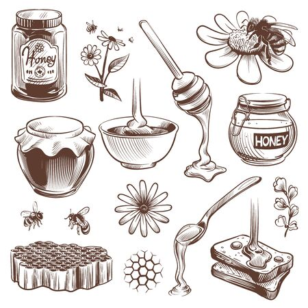 Hand drawn honey. Beekeeping sketch natural organic sweet food honey, pollen and beeswax, hive bee with honeycomb vintage vector set Ilustração