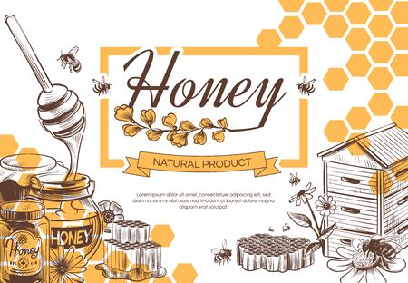 Sketch honey background. Hand drawn tasty sweet dessert natural organic honeycomb, beeswax and bee, beekeeping banner, poster vintage vector design