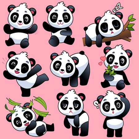 Cute panda. Adorable little asian bears in different poses, sleeping and playing, eating bamboo, funny pandas in jungle vector sweet animal characters