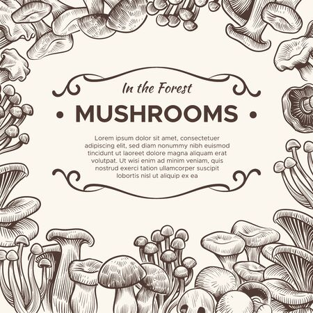 Mushrooms. Hand drawn mushroom champignon, truffle, porcini and chanterelle, shiitake, vintage sketch for vegetarian menu, packaging vector engraving background 版權商用圖片 - 142629734