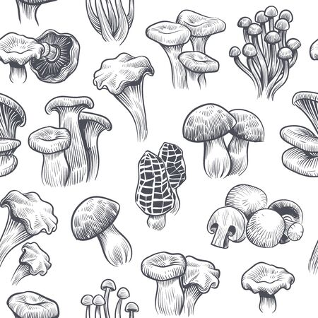 Mushroom seamless pattern. Sketch print with various mushrooms truffle and champignon, chanterelle and porcini, honey agaric and shiitake vector texture